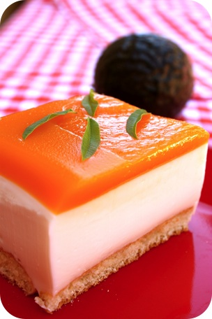 terrine-fruits-de-la-passion